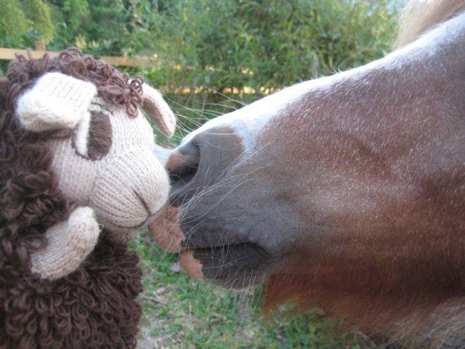 Lamberta bekommt einen Ponyknutscher.